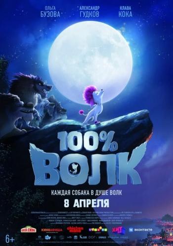 100% волк Вятские Поляны