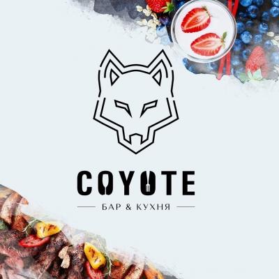Отзыв Coyote / Койот