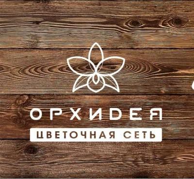 Вятские Поляны Живые цветы Орхидея