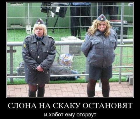 Киевская ОГА просит МВД расширить проект новой полиции за пределы столицы - Цензор.НЕТ 8586